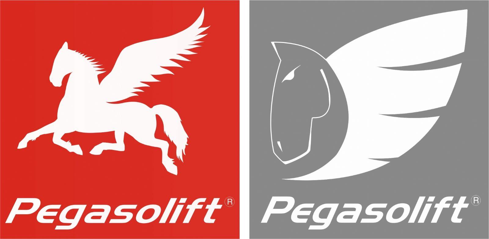 Logo Pegasolift