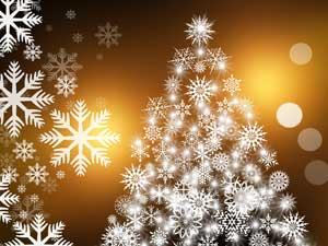Frohe und besinnliche Weihnachten!